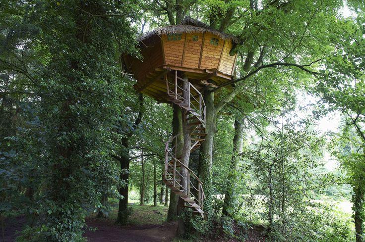 29 best cabanes dans les arbres images on pinterest. Black Bedroom Furniture Sets. Home Design Ideas