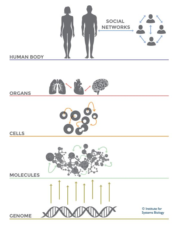 What Is Systems Biology | Institute for Systems Biology