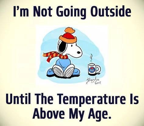 Nice A Picture Of Snoopy That Reads Iu0027m Not Going Outside Until The Temperature  Is Above My Age