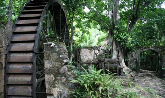 Former sugar plantation in Balenbouche Estate, St Lucia ...