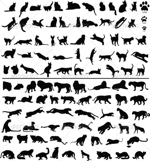 100 Cats — Vector EPS #leopard #lioness • Available here → https://graphicriver.net/item/100-cats/4044868?ref=pxcr