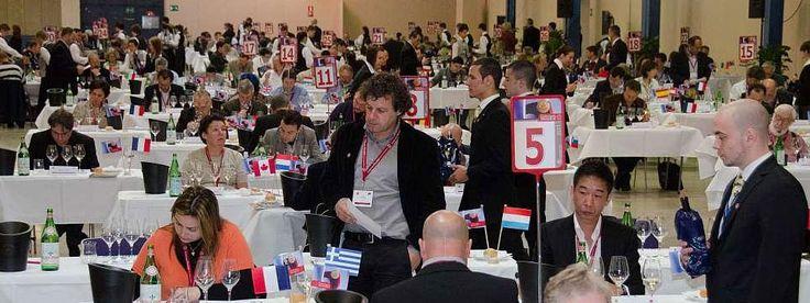 Os mlehores vinhos Chilenos no Concurso Mundial de Bruxelas 2013 http://vinhoemprosa.com.br/2013/09/os-melhores-vinhos-chilenos-no-concurso-mundial-de-bruxelas-2013/
