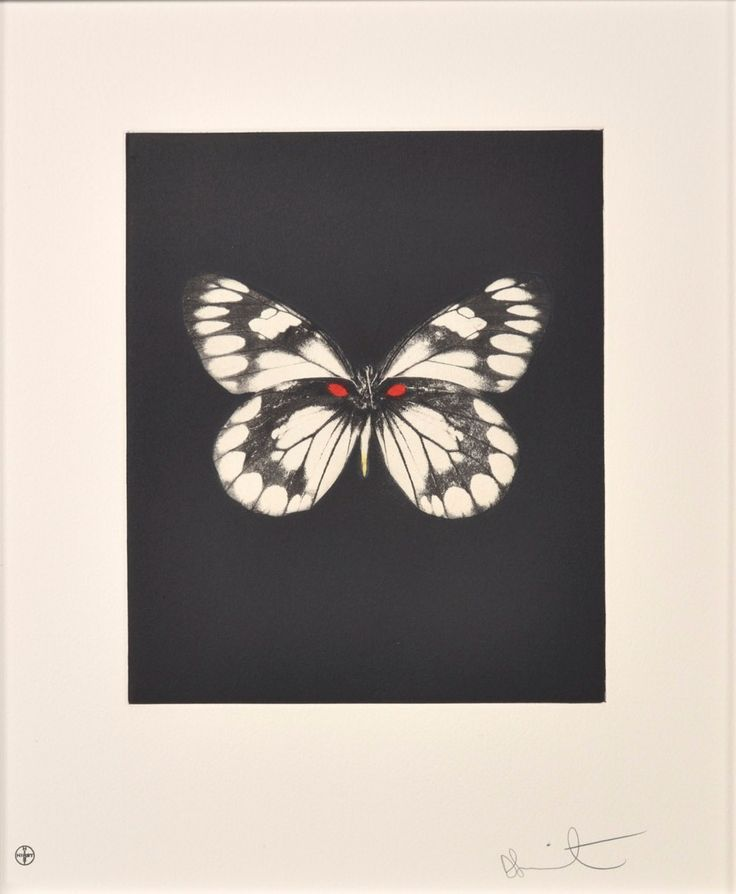 9a061e45df6a DAMIEN HIRST - BUTTERFLY (PORTFOLIO OF 12) - WENG CONTEMPORARY http    ·  PapillonAbeillesÉclair