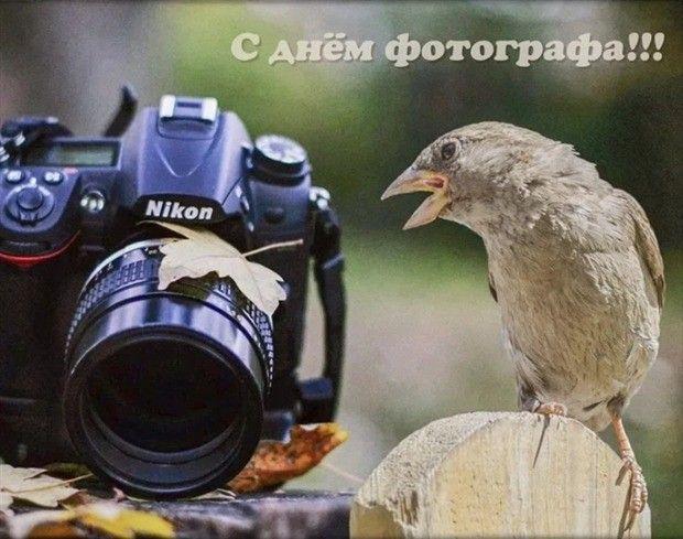 Pin By Tatyana On Moi Otkrytki Druzyam Binoculars