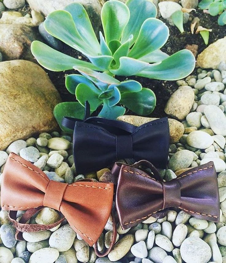 Repost from @goldennopalito 🐢 #karu #karudesigns #karuhandmade #handmade #leather #accessories #bow ties #bowtiesarecool #leatherbowties #mensaccessories #mensstyle #succulents #nature #dapper #bowties