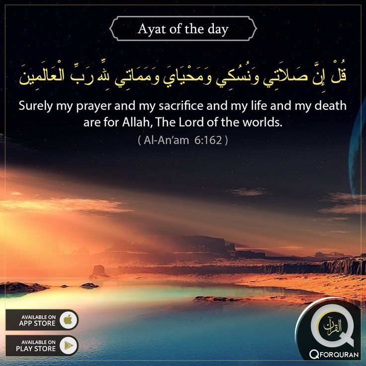 **AYAT OF THE DAY** Surely, my prayer and my sacrifice and my life and my death are for Allah, The Lord of the worlds.  (Al-An'am 6:162)  #AyatOfTheDay #Quran #QforQuran