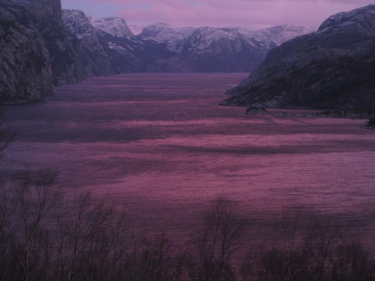 Lysefjorden, Norway: Morning by the fjord. Pink skies give colour to the fjord. December 29th 2015