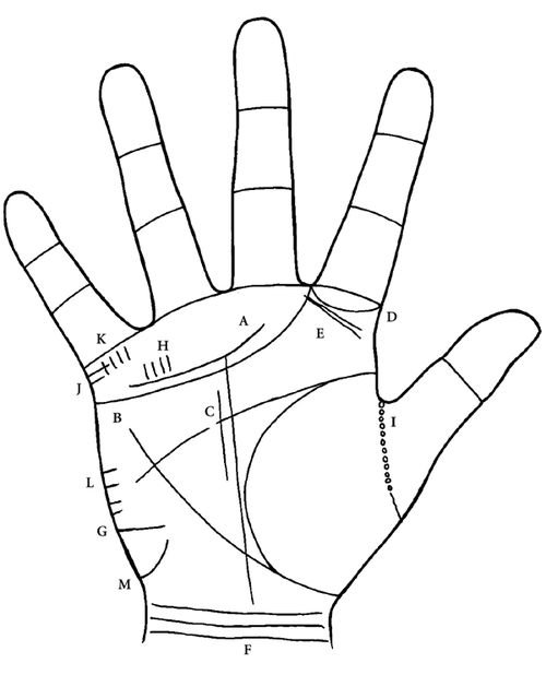 palmistry how to read hand lines