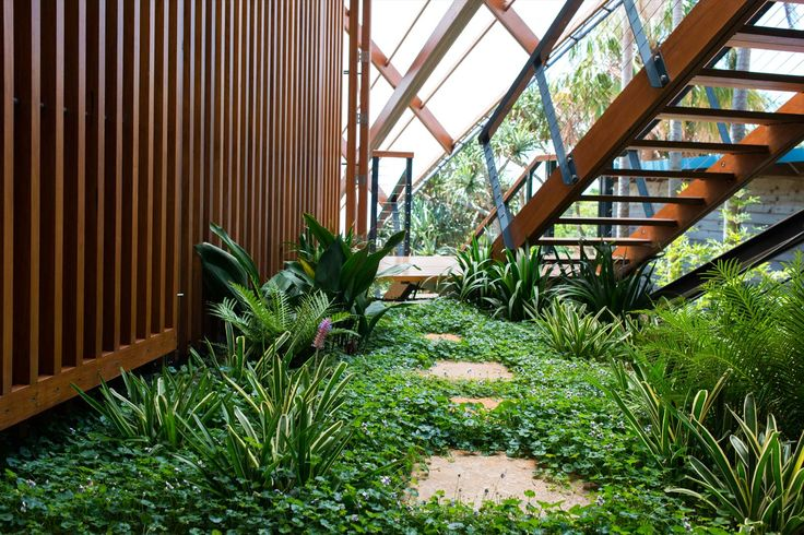 Wategos Byron Bay Landscape Architecture