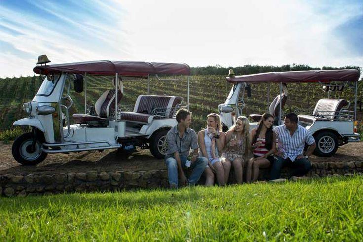 Wine Tour Stellenbosch