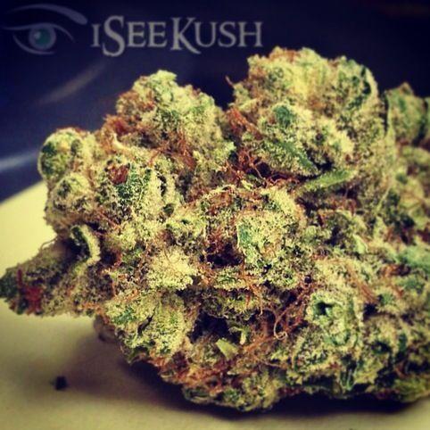 GM$H247 WAKE AND BAKE SESSION #Goodmorning #KushPhoto @iSee Kush #Marijuana #indica #Kush #THC #Weed #Dank #maryjane #ganja #w420 #calikush #herb_gram #blackleafsociety #dopemeds #growops #thehighsociety #maryjane #weedlyfe #instaweed #m