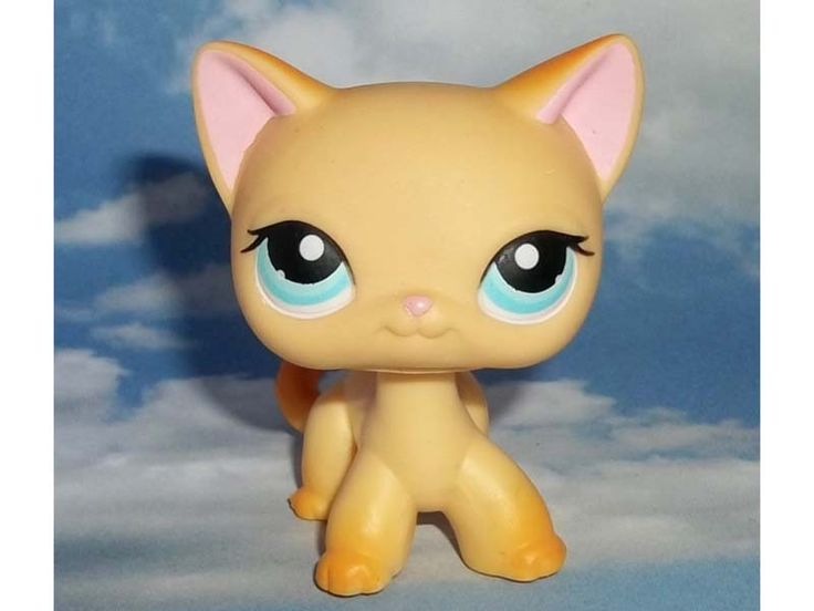 Littlest Pet Shop Orange short haired cat #339(rare) Catness Banks. Used in the series of Meet the Banks. Courtney Banks older sister.