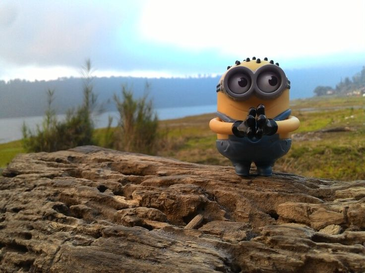 Minion at Buyan Lake