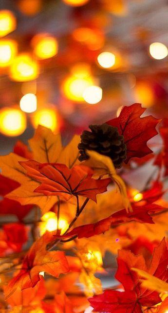 Best 25+ Autumn Iphone Wallpaper Ideas On Pinterest