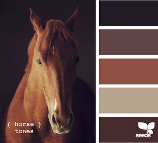 Color palette inspired by a horse, yup, it is going to be a love for me!