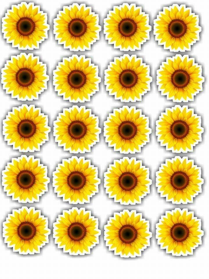 Flores Paper Sunflowers Sunflower Party Sunflower Themed Wedding