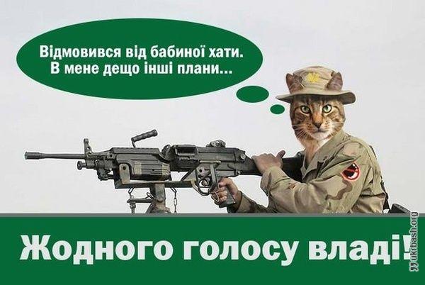 Картинка 2234 - http://p2234.ukrbash.org/pt