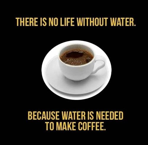 : Addiction Memorial, Food Quotes, Food Chains, Memorial Lovers, Coffee, Memorial Quotes, Water Quotes, Drinks Water, Amser Memorial