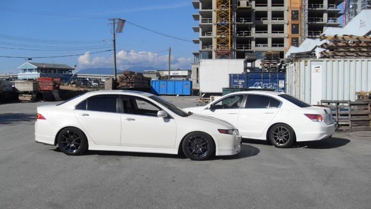 Gallery For gt; Acura Tsx 2004 White