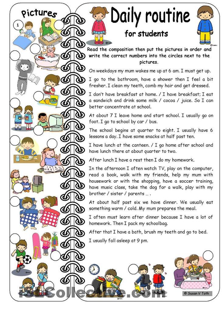 Daily routines for students * elementary * with key