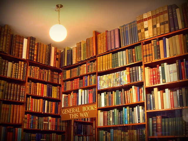I would love to have a library like this in my house - and I would never leave it.