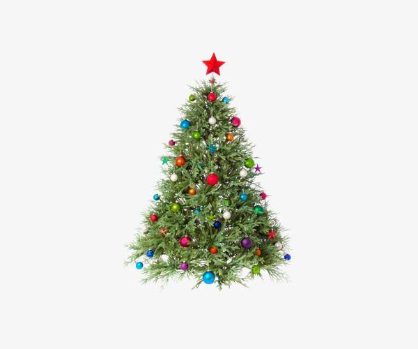 Https Www Google Com Search Q Christmas Tree Png Christmas Tree Christmas Tree