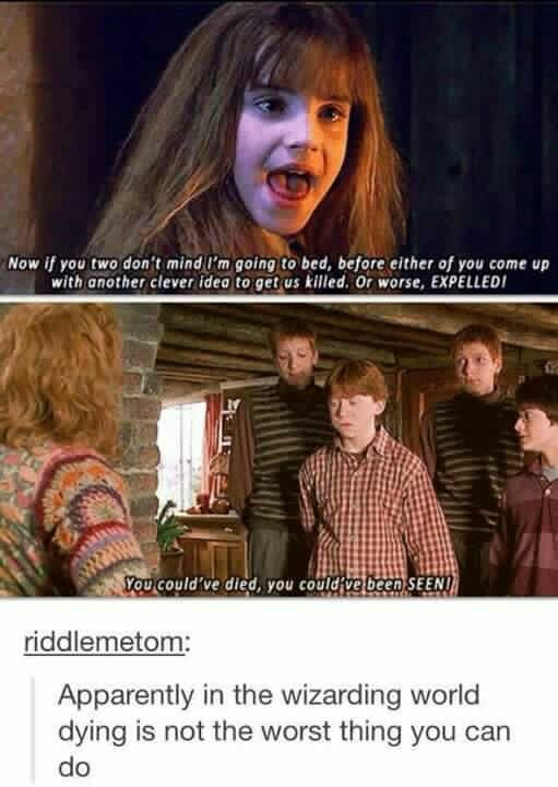 """Well yeah that's a DUH have y'all EVER listened to Dumbledore?! """"After all, to the well-organized mind, death is but the next great adventure."""""""