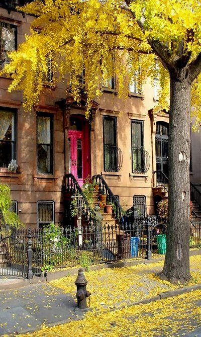 Brooklyn, New York Plus d'infos sur le quartier de Brooklyn sur Cityoki !  http://www.cityoki.com/fr/villes/newyork/brooklyn/  More info about Brooklyn district on Cityoki website! http://www.cityoki.com/en/cities/newyork/brooklyn-district/