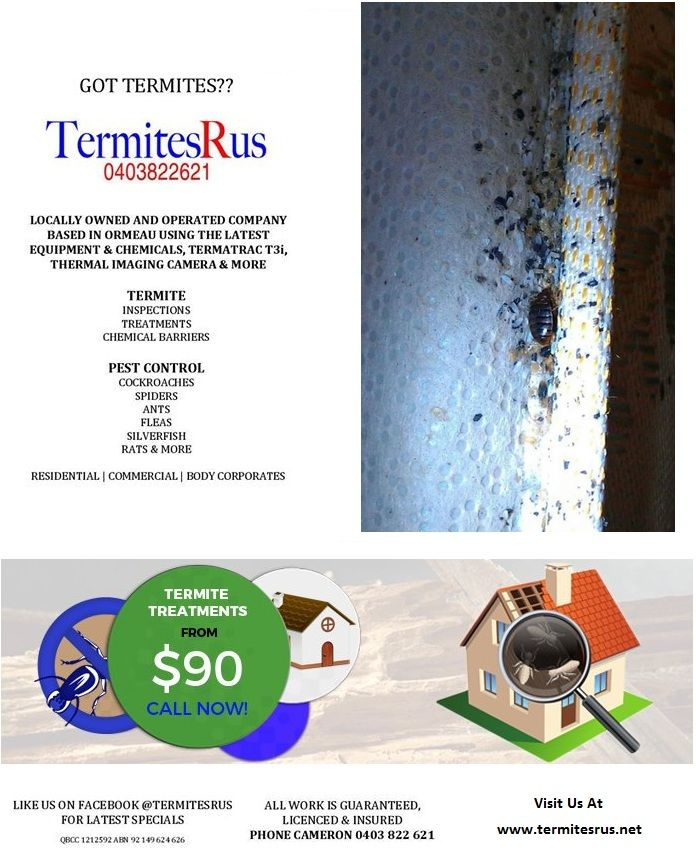 Get dependable, quality Termite control services with TermitesRus. With us, you can count on Honest Professional Termite Control Serving Brisbane & Surrounding Areas. For more detail call us now at 0403 822 621