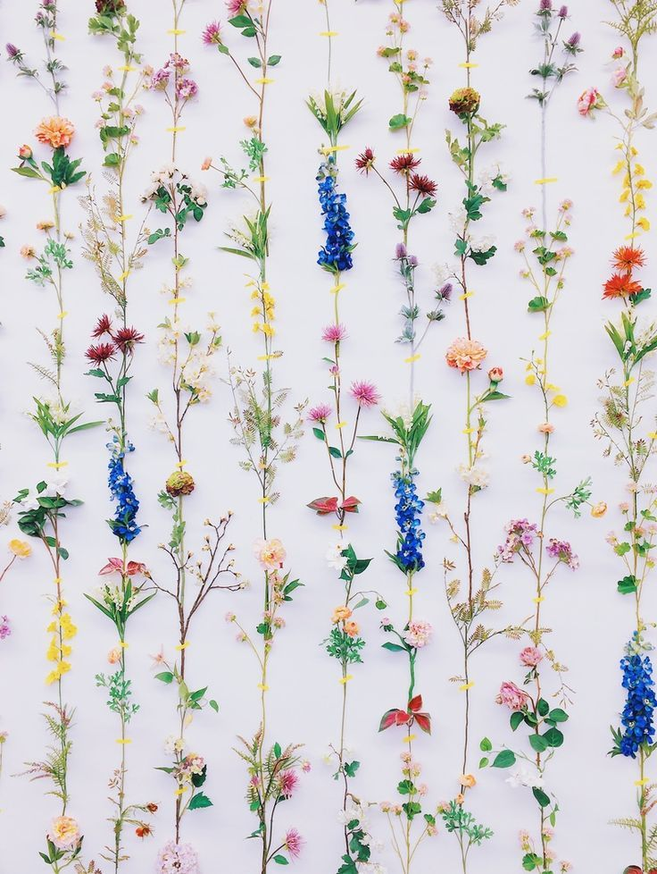 See more of Ordinary Moments's VSCO. Flower wall decor