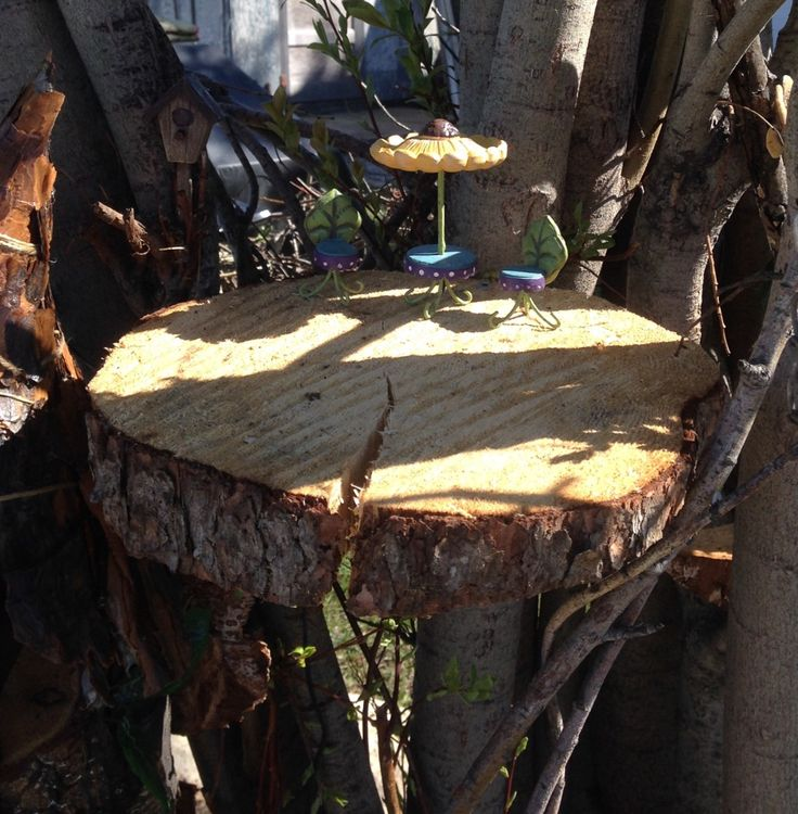 """This will be they """"sun deck"""" for the fairies.  Watch for more ...."""
