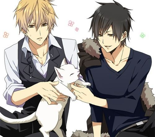 Heiwajima Shizuo and Orihara Izaya // I don't ship them ...