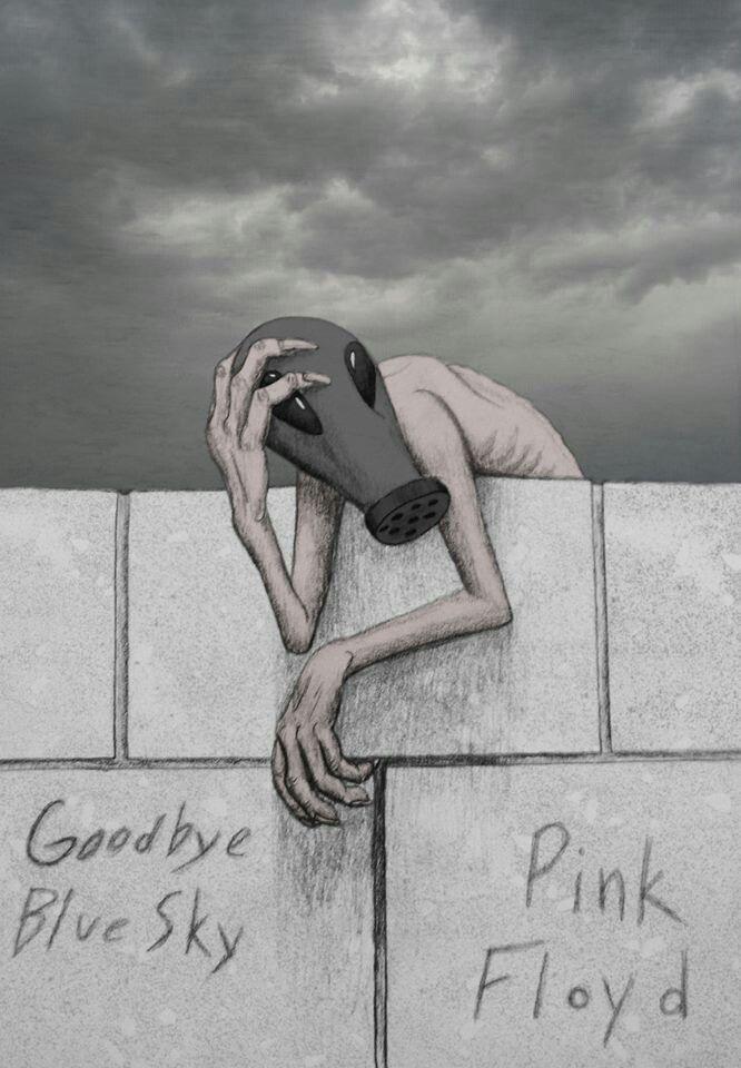 ☮ American Hippie Classic Rock Music ~ Pink Floyd . . . Goodbye Blue Sky
