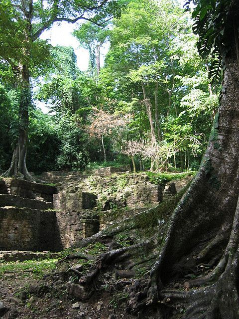 Incan Ruins in the jungle, Palenque, Mexico