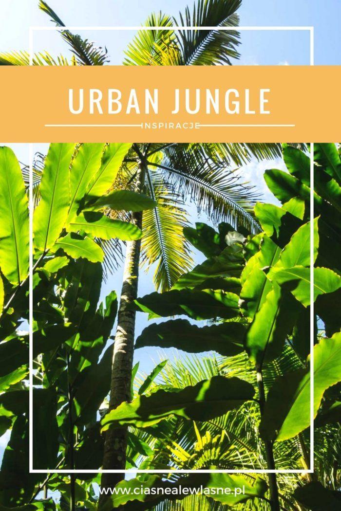 """""""Urban jungle"""" we wnętrzach i kadry z tropikalnego lasu   Ciasne, ale własne! Blog o wnętrzach"""