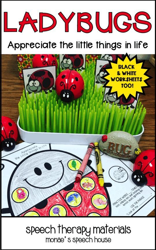 LADYBUGS! Do you like feeding activities for articulation? This fun resource includes Feeding JAR, lots of bugs and grass for hiding bugs. Additional suggestions included too! This 60+ page resource will help your students practice /l/ and /l/ blends & more. This can also be used as a fun feeding activity for nonverbal and limited verbal students as a reinforcer. These are perfect for speech therapy, special education, autism, kindergarten, 1st, graders. {preK, Kinder, speech therapy, gen ed