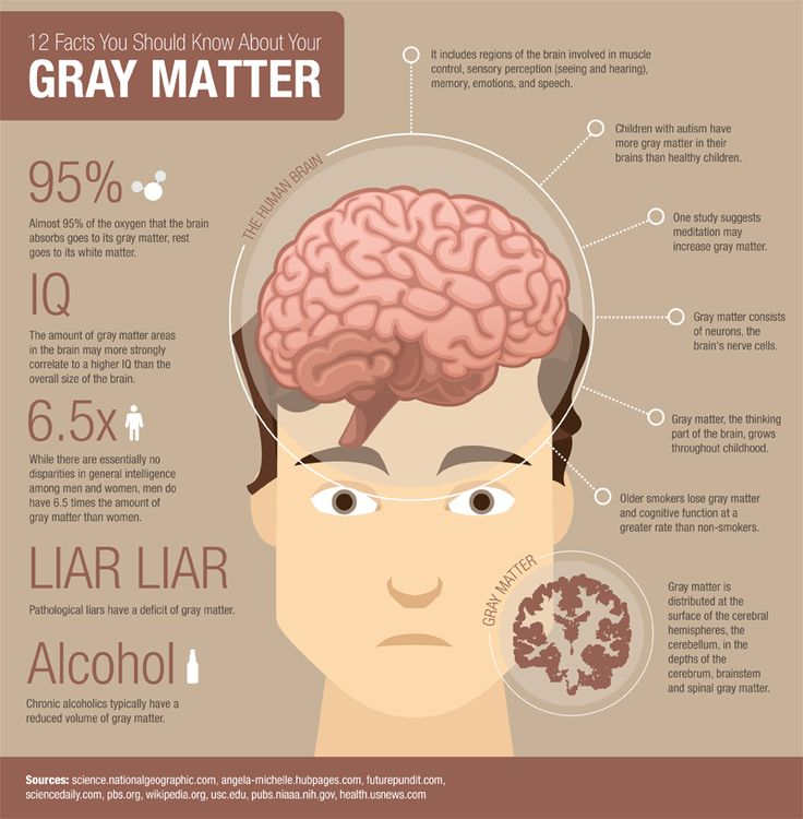 The nervous system is classified into 2 sections: gray matter and white matter. Gray matter is mostly made from the cell bodies and the whit...