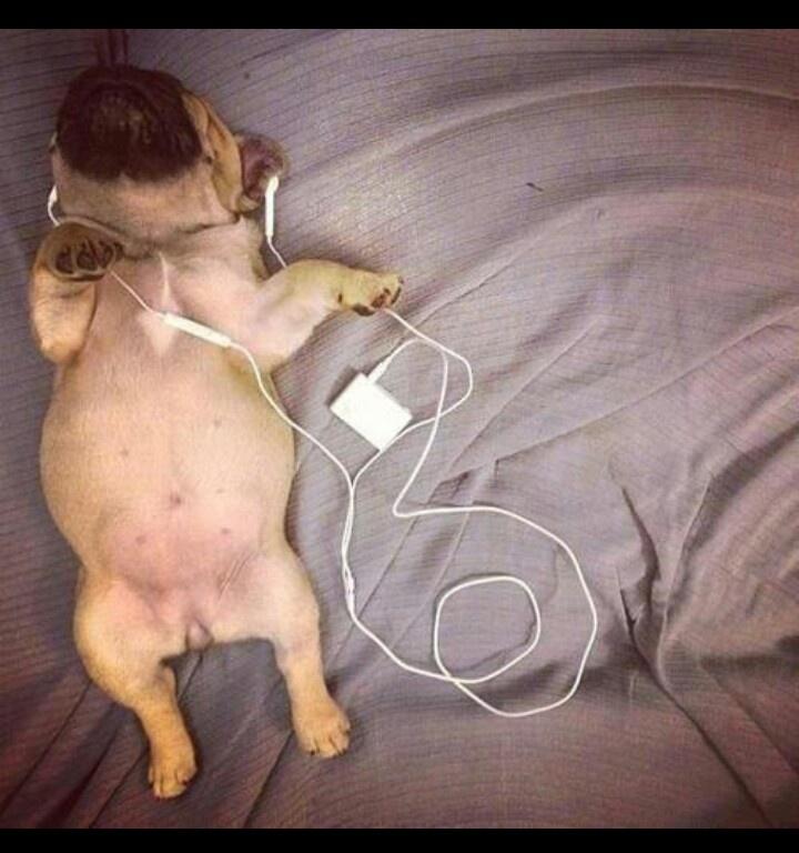 Doggy- Style :)