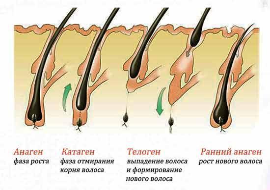 ДОМАШНИЙ ШАМПУНЬ ДЛЯ РОСТА ВОЛОС http://pyhtaru.blogspot.com/2017/03/blog-post_107.html  Шампунь для роста волос!  Ингредиенты:  - 1/4 детского мыла; - 2 ст. ложки сухой горчицы.  Читайте еще: ==================================== ПОЧЕМУ НЕЛЬЗЯ СИДЕТЬ НОГА НА НОГУ http://pyhtaru.blogspot.ru/2017/03/blog-post_400.html ====================================  Приготовление:  Натрите на тёрке четверть куска детского мыла, залейте мыльную стружку стаканом горячей воды, процедите и добавьте в…