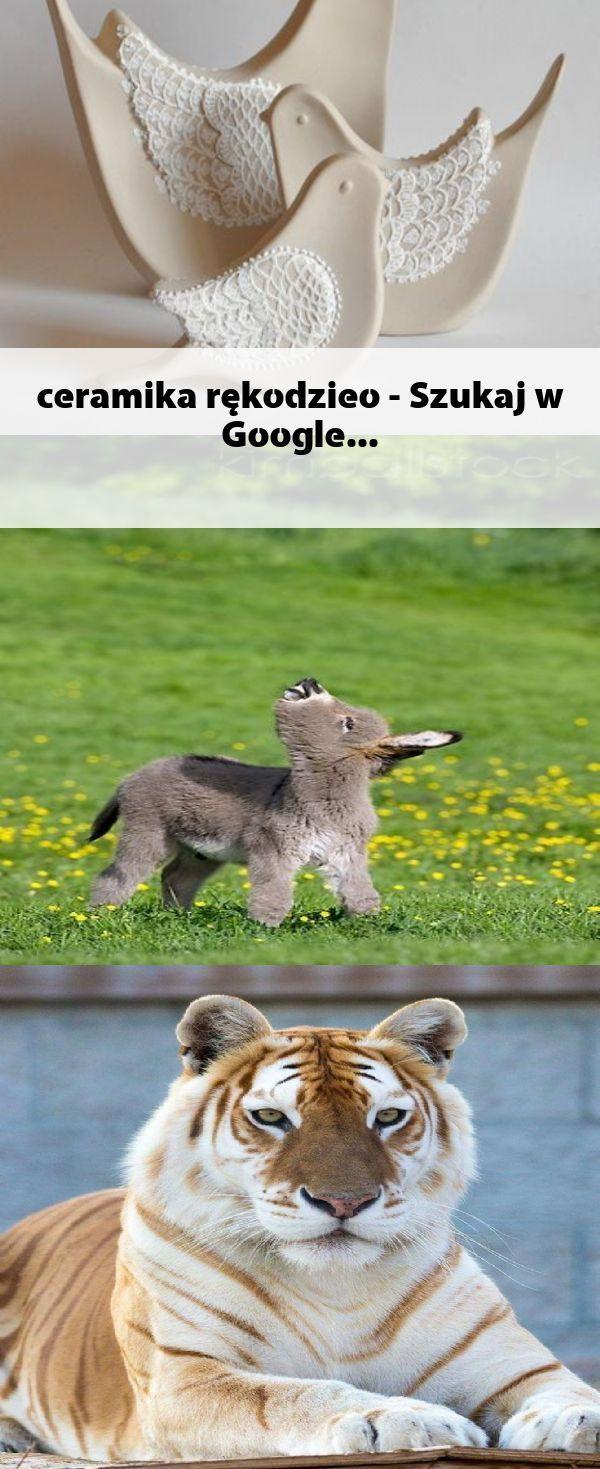 Google Tiere
