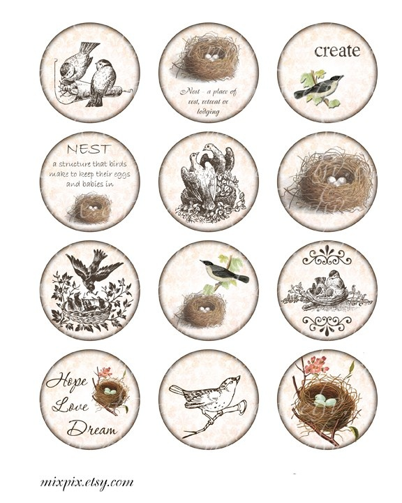 4202 best labelsetiketten images on pinterest printable labels 2 inch circles vintage printable tags background digital collage sheet large images round nest bird download and print scrapbooking sticker negle Image collections