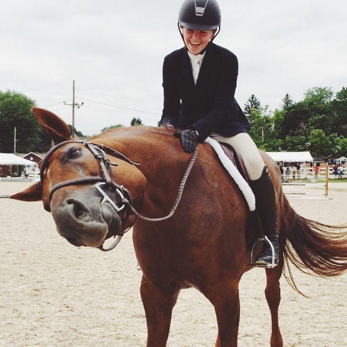 horse-neigh: horse, you're too cute. - jumpjumpjump