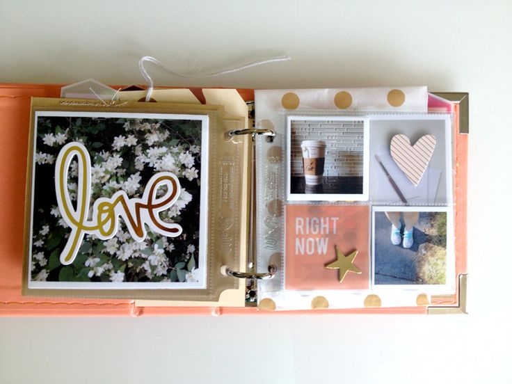 Favourite Things by cinback at @studio_calico