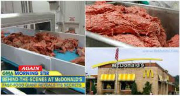 loading... Inspectors have found human meat and horse meat in the freezer's of an Oklahoma City McDonald's meat factory. Human meat was also recovered in several trucks that were on their way to deliver the patties to the restaurants. According to various reports, authorities have inspected factories and restaurants across the country and have found …