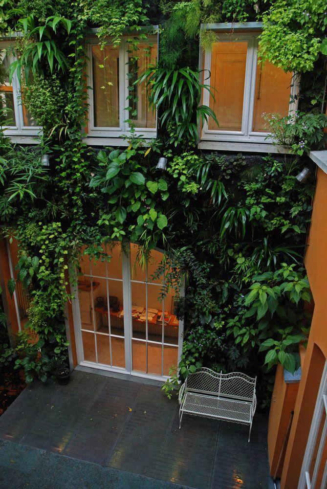 urban vertical gardening | Patrick Blanc's house, paris | design Patrick Blanc