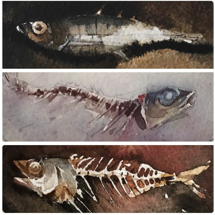 'Beach findings', watercolor x 3 by Magnus Petersson.