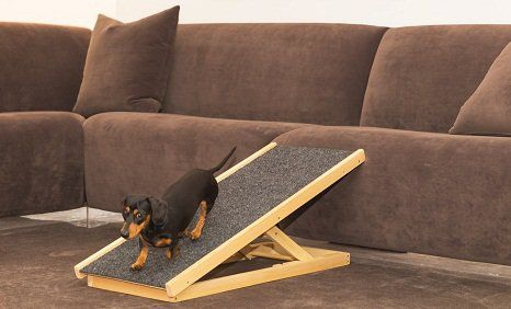 Dog Ramp Online, Buy Pet Ramp Online                                                                                                                                                                                 Más