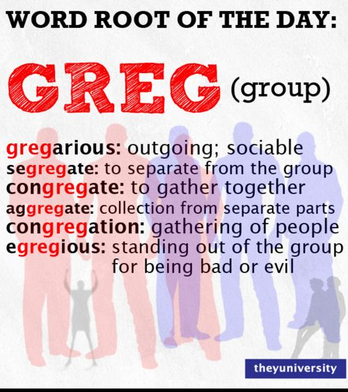 Did you know that your friend Greg can help you with vocabulary on test day?!: