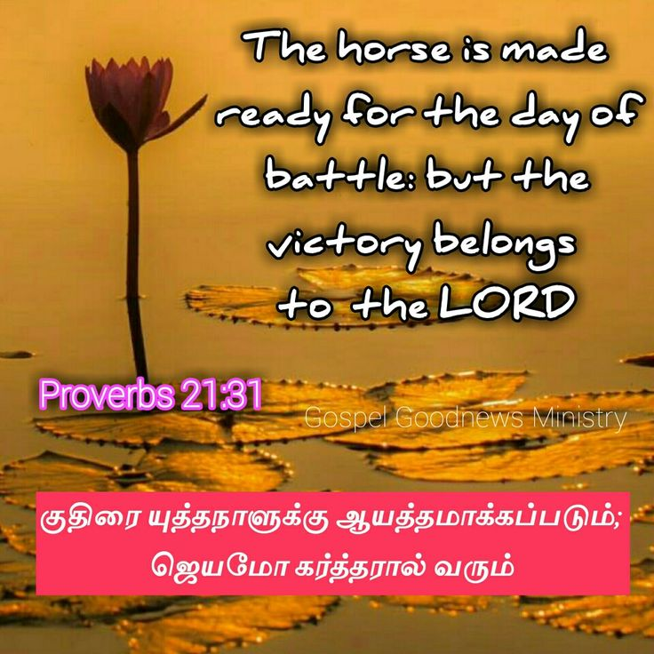 Proverbs 21:31 Victory belongs to the Lord 👍👌💐🎂