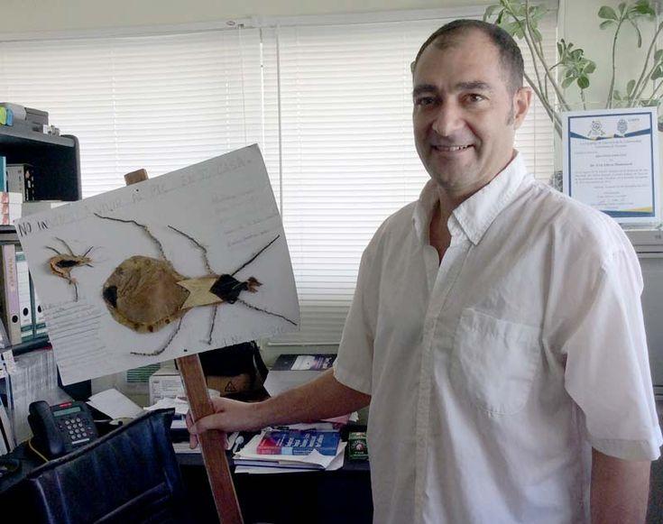 Avances alentadores contra el mal de Chagas